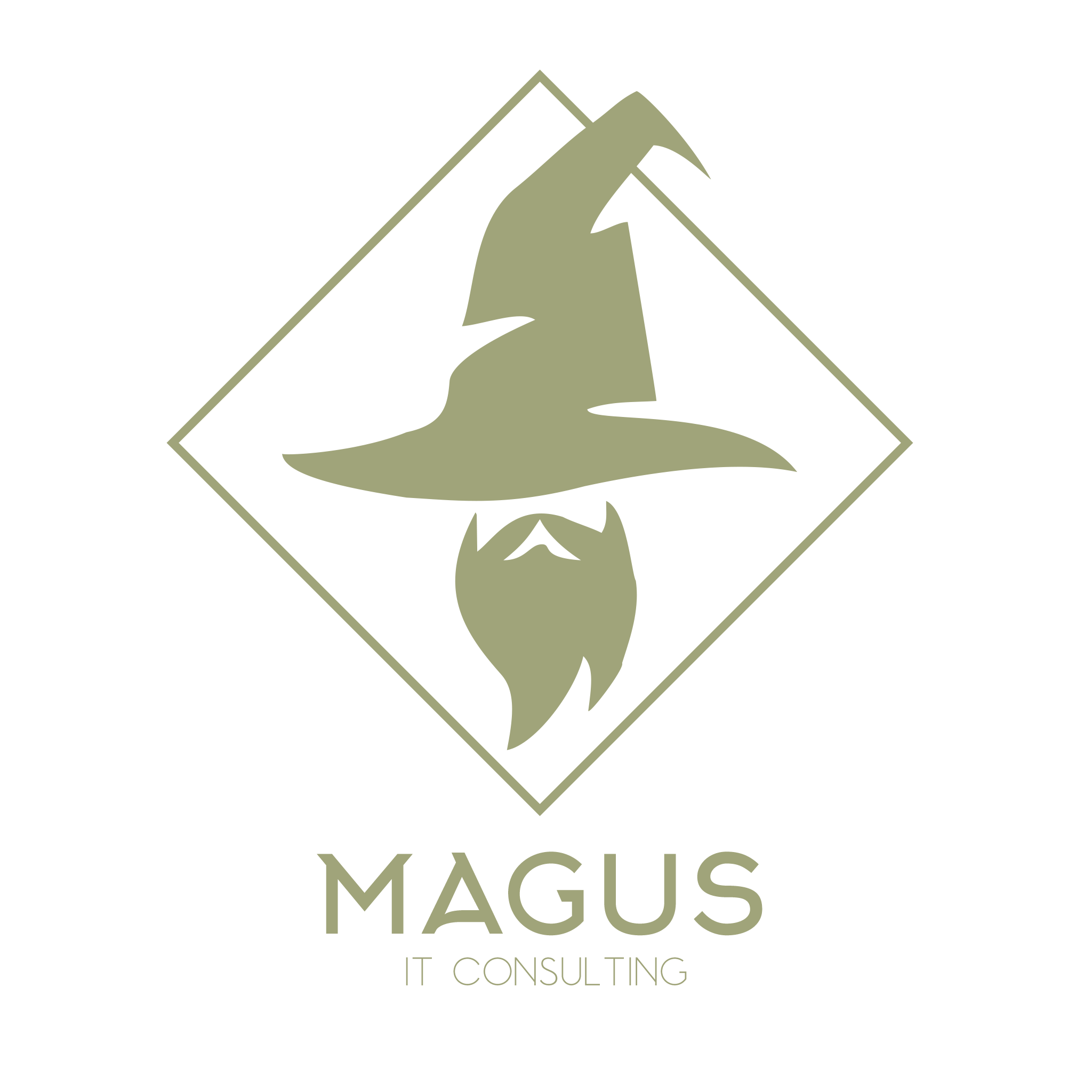 Magus IT Consulting